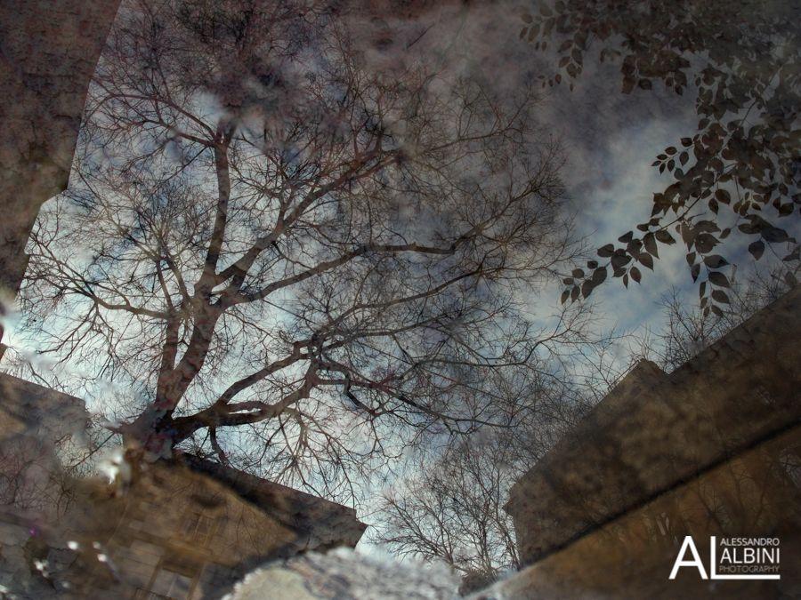 born street photography